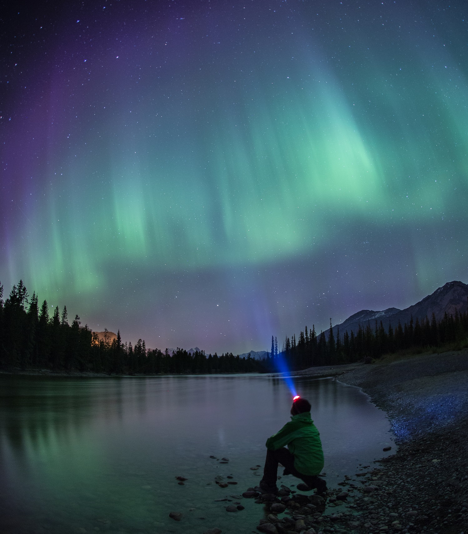 All About Aurora Borealis Tourism Jasper